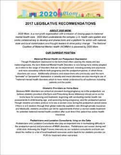 2020 Mom's state advocacy platform