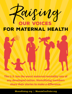 MomsRising has shared their new  Birth & Maternal Health Resource Book