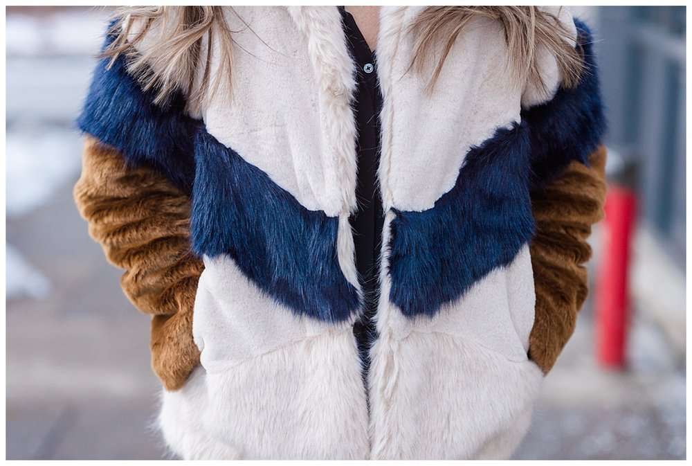 multi-colored fur_0804.jpg