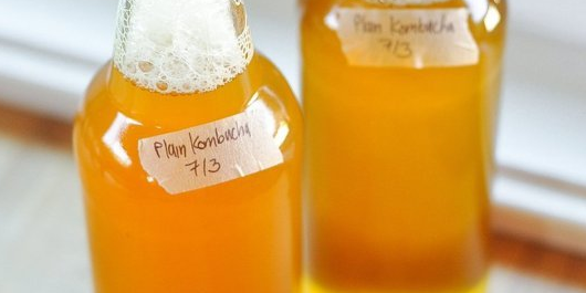 Learn to make your own kombucha here.