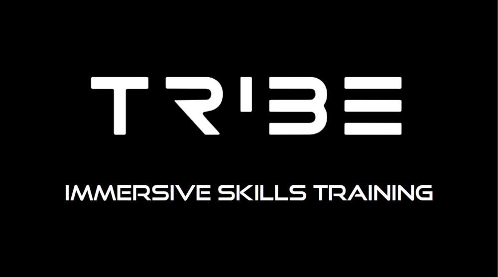 Immersive Skills Training .png