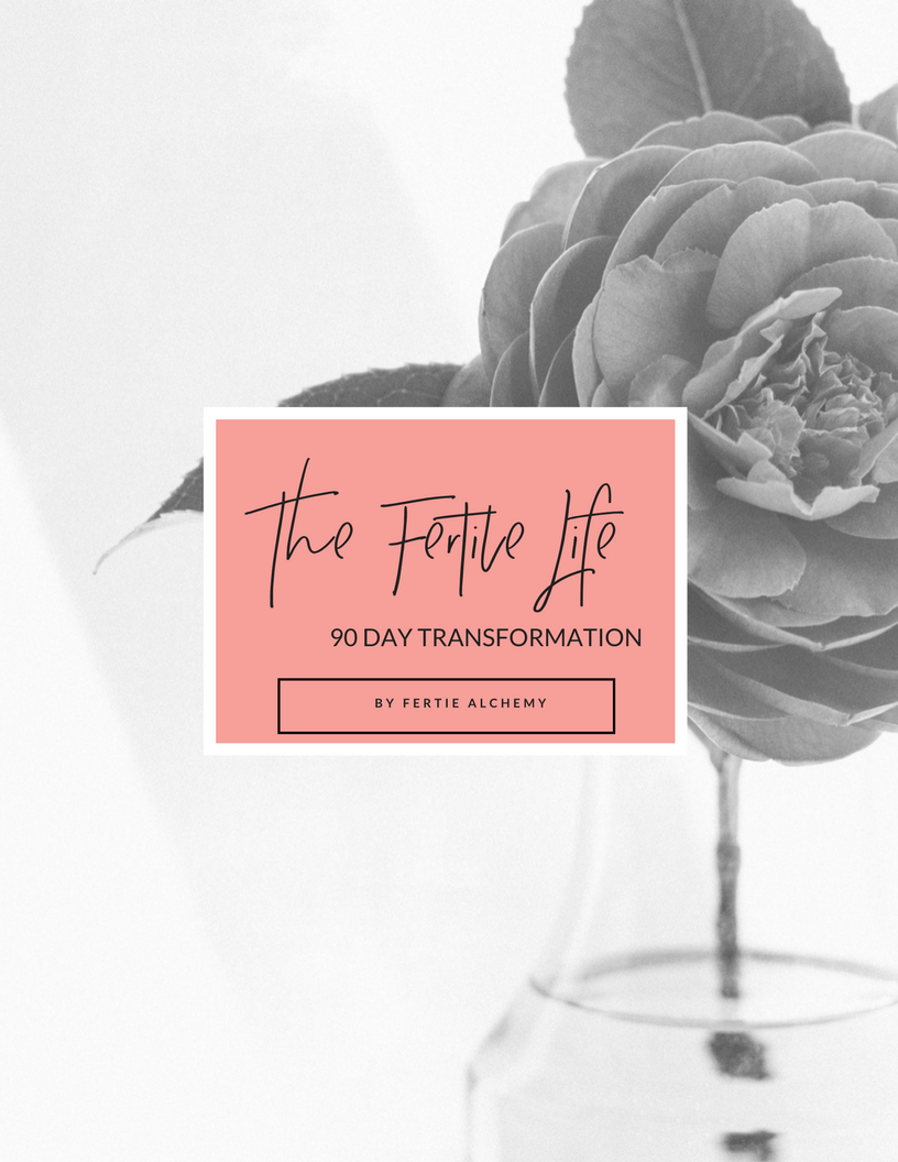 The Fertile Life 90 day Transformation