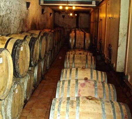 C. Bonfils cellar.jpg