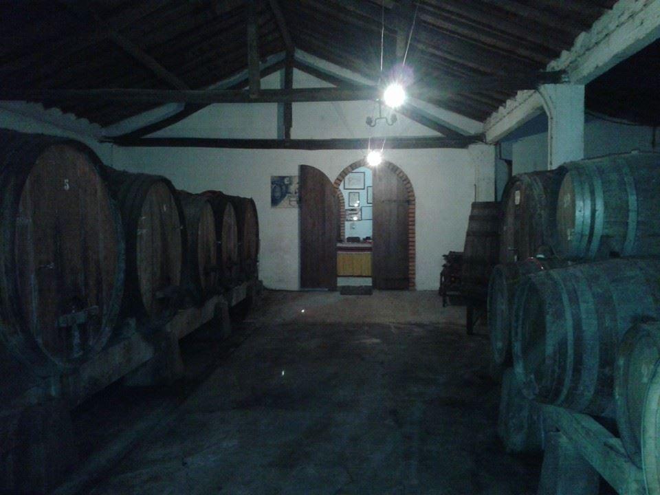 Estagio de vinhos tintos.jpg