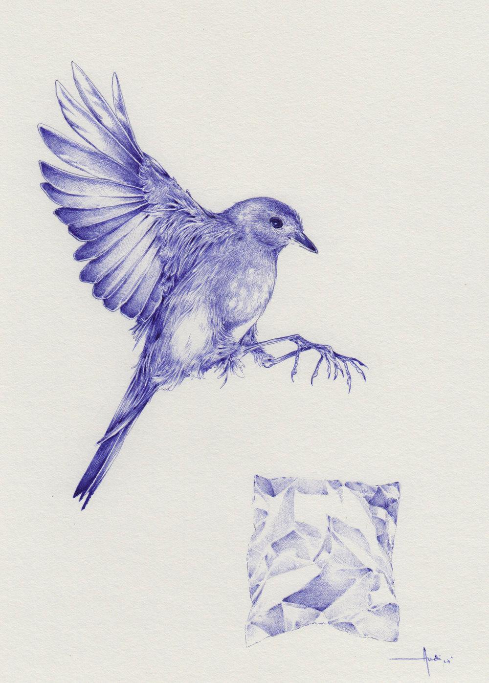 Estudio de ave y papel aluminio