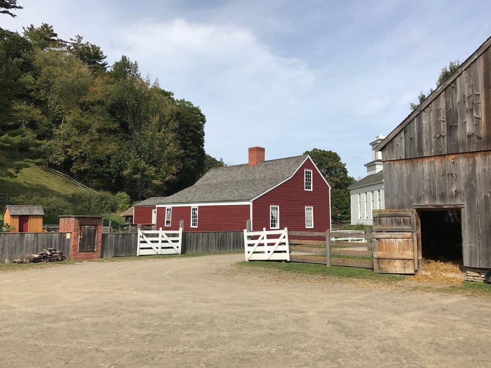 Lippit Farmyard.jpg