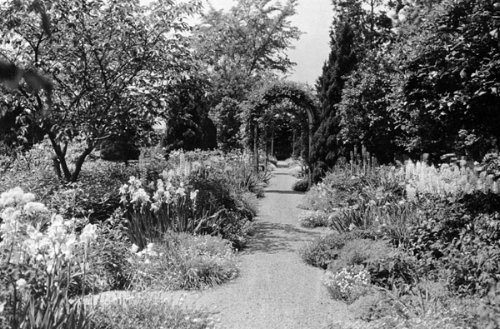 Girdle ridge garden 3.jpg