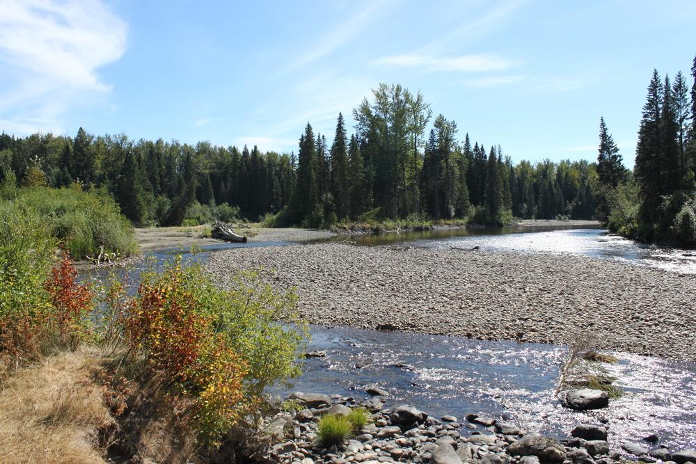 river 041.JPG