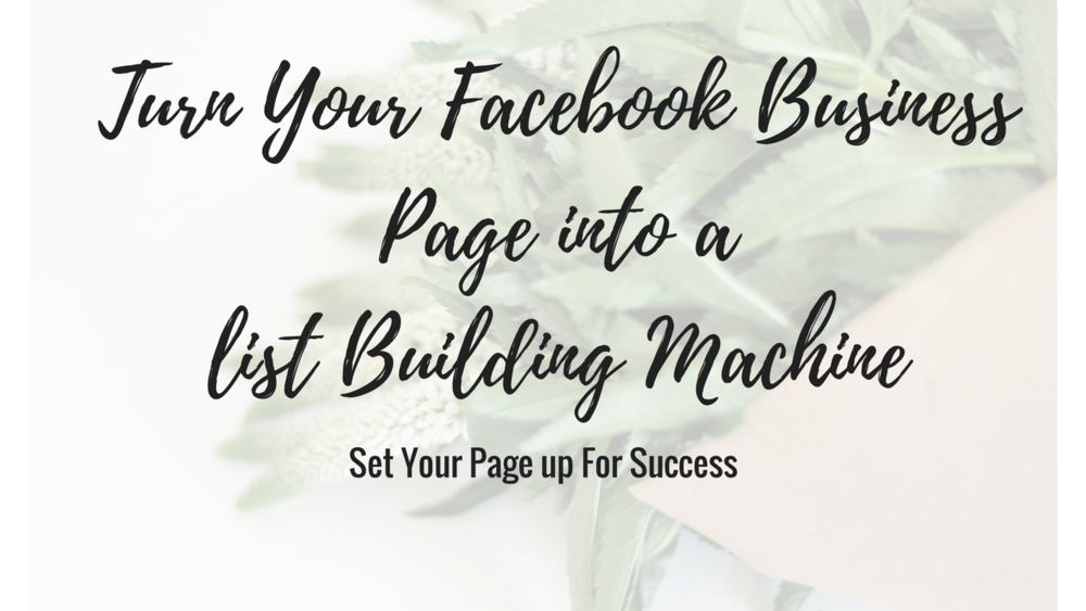 Turn Your FaceBook Business Page into a List Building Machine!