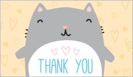 17385-thank-you-cat.jpg