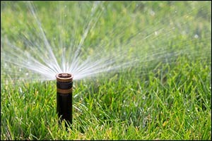 efficient-irrigation