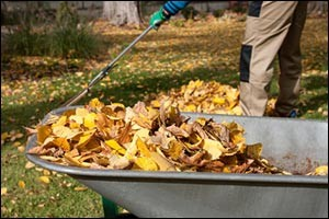 fall-cleanup-middle-tn