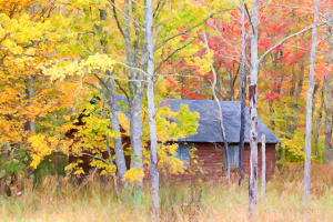 Fall Head Over Heels With These Fall Landscaping Ideas Premier