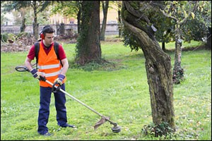 grounds-management