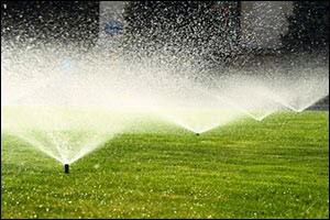 winterizing-irrigation