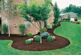 Beautiful mulch around a small tree surrounded by small bushes and lush yard - Premier Lawn Care Nashville