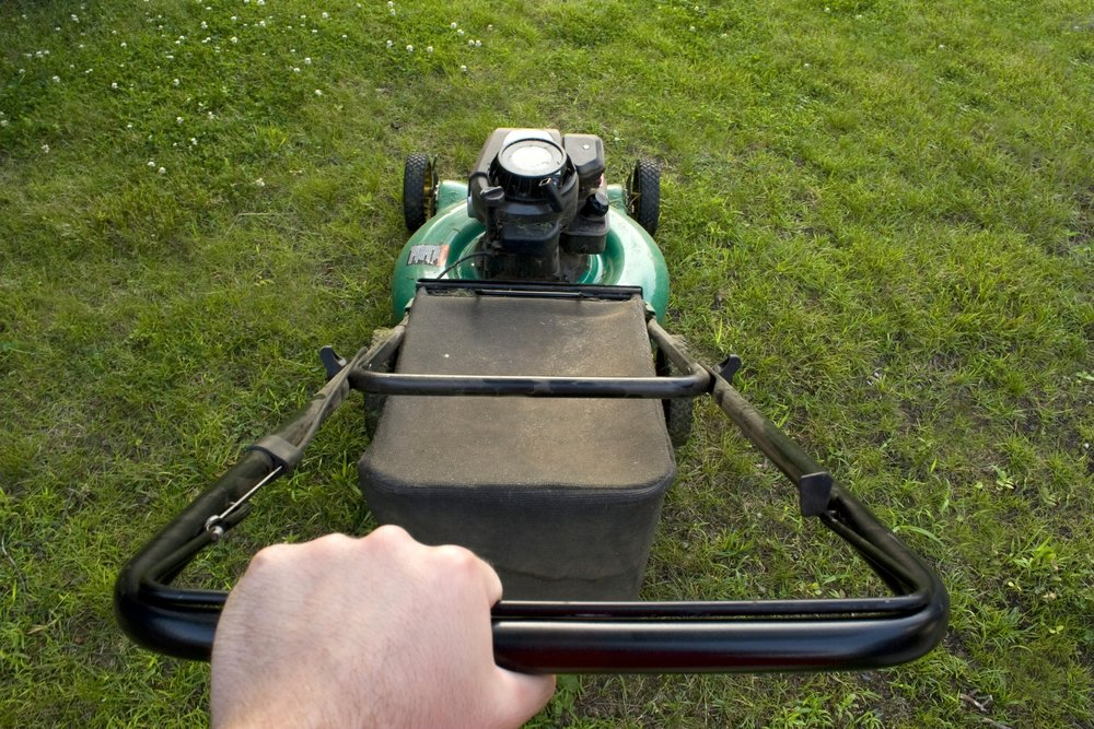 the-interesting-point-of-view-from-a-man-pushing-a-lawn-mower_SFMZnpdRri (1).jpg