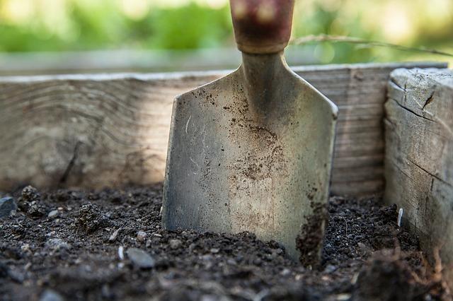 garden-1176406_640.jpg