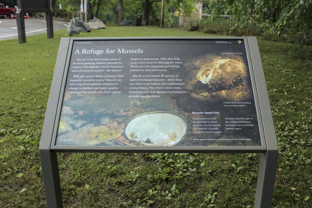These wayside exhibits were also used to interpret the parks landscape, history, and in this case, mussels!