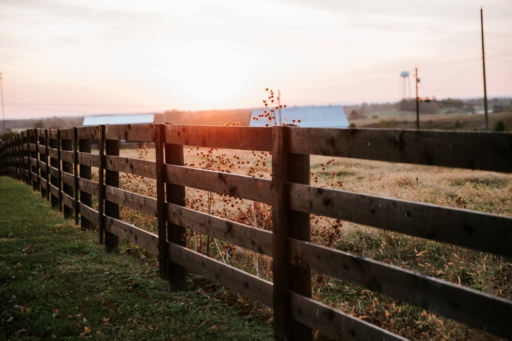 maple-lane-memories-maysville_0001.jpg
