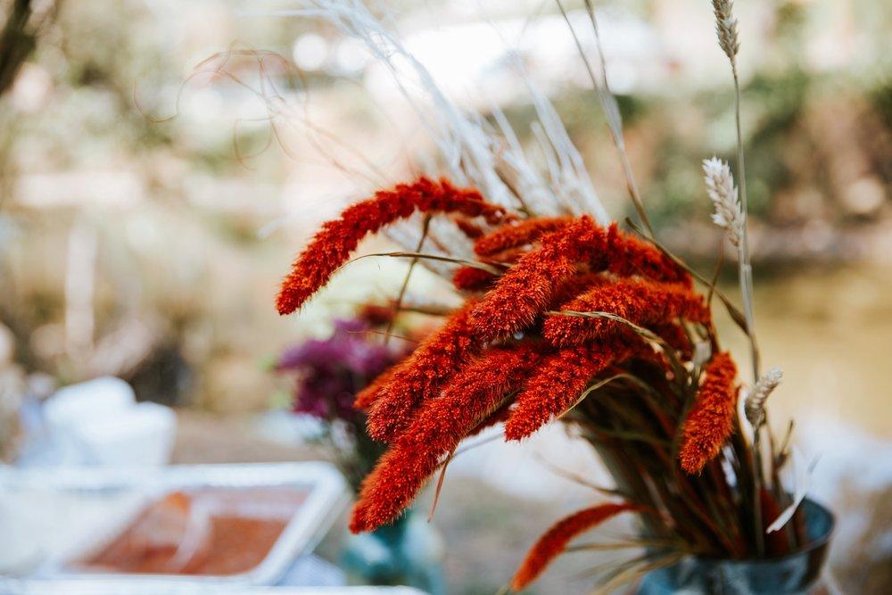 backyard-wedding-_0009.jpg