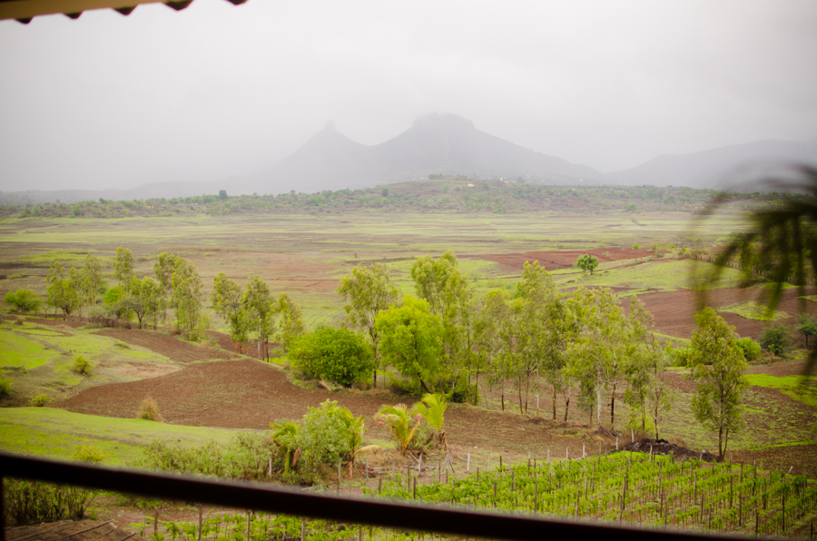 On a rainy afternoon at this heavenly place in Nashik, India. It's a winery nestled between mountains, called Vallonne Vineyards. Many many thanks to my generous hosts, Rabindra and Nupur.