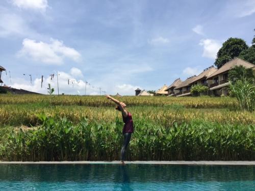 Naturen och risfälten på Bali är magiska.