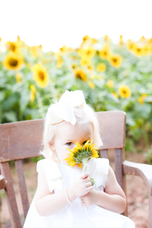 sunflower-18.jpg