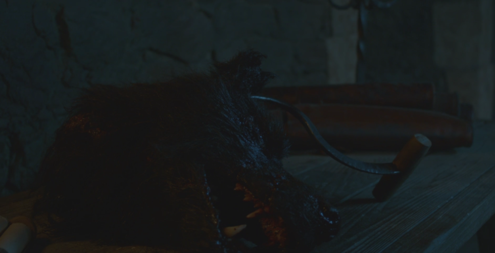 Shaggydog's head, presented to Ramsay Bolton in  Oathbreaker  (S6E3). R.I.P. Shaggydog