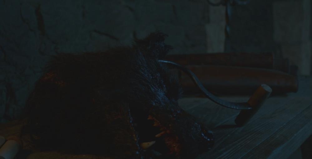 Shaggydog's head, presented to Ramsay Bolton in  Oathbreaker  (S6E3). R.I.P. Shaggydog