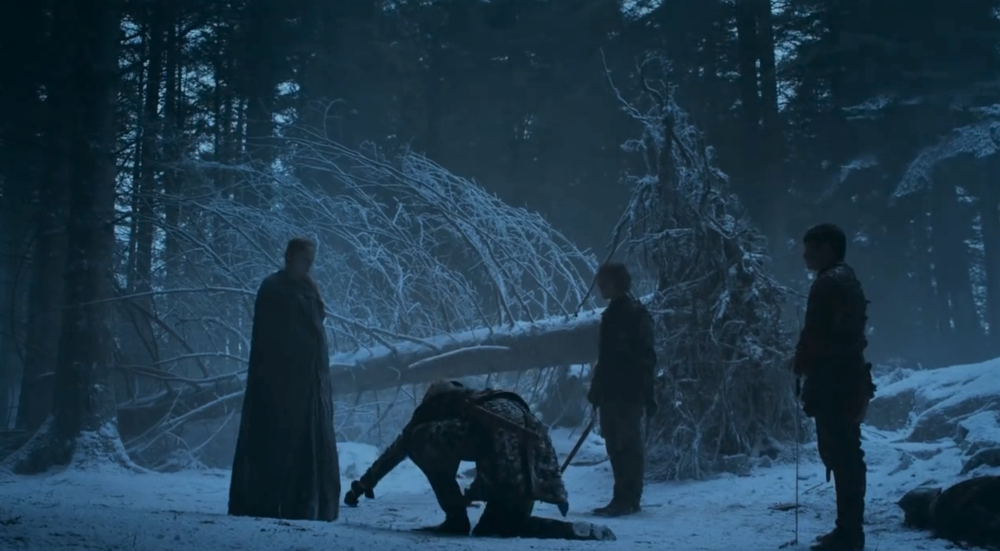 Brienne swearing fealty to Sansa's cause  before  it was cool