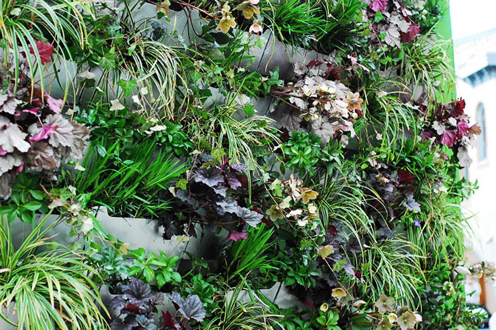 Roots_First_Design_Pop_Up_Green_Wall_6.jpg