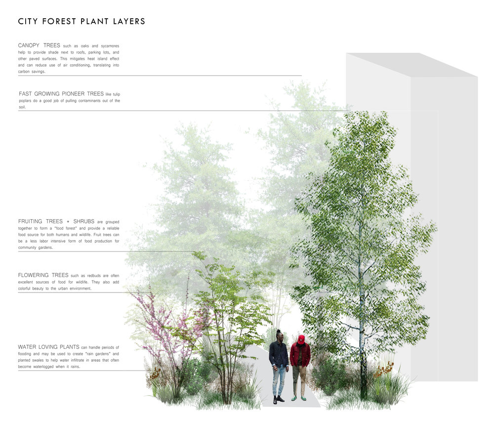 Roots_First_Design_Movable_Forest_2.jpg