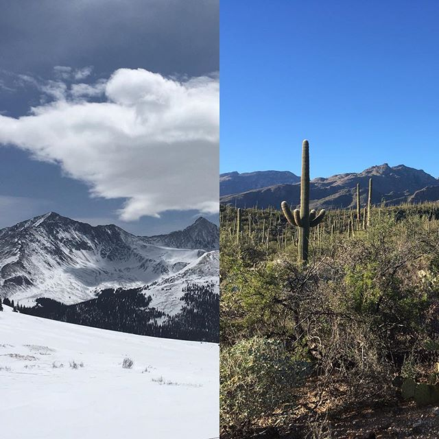 Heading to Arizona today for the #tucsongemshow! Although I love the snow and mountains, I am looking forward to some time in the saguaros and desert.  #roadtrip #snowtodesert #coloradotoarizona #coloradojeweler #denverjeweler #mokumegane #customjewelry #gemshow #tucsonarizona #weddingjewelry #treasurehunt