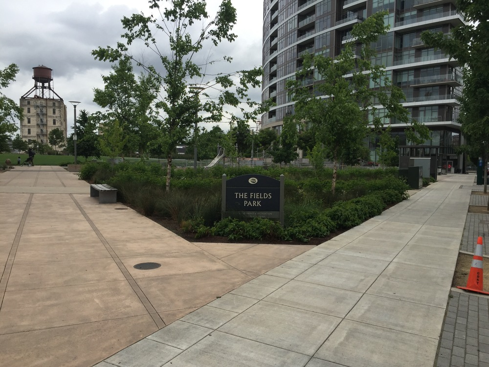 The Fields, a park adjacent to numerous condos and apartments in the Pearl District.
