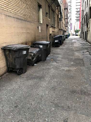 26 trash bins and containers in this alley from existing buildings