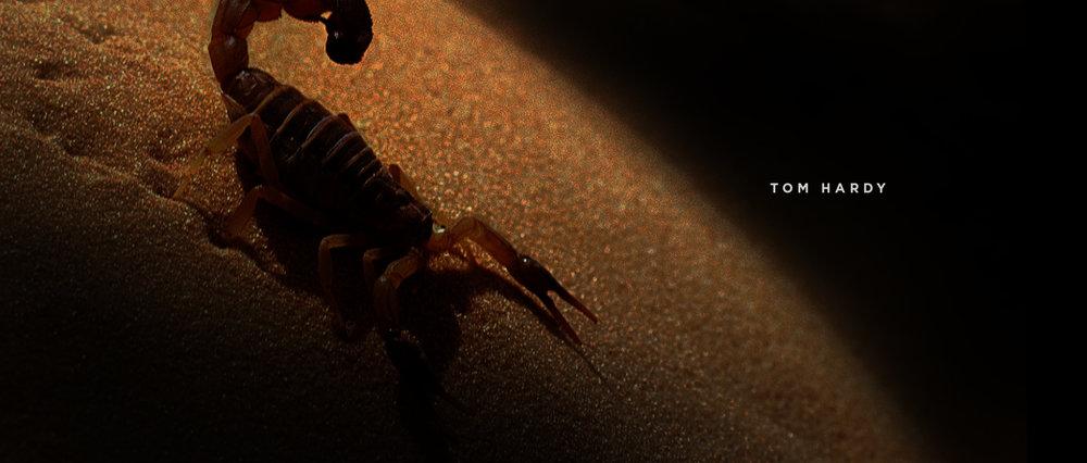mad_01_scorpion.jpg
