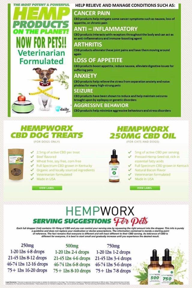 EBARR - Hempworx Pet Flyer