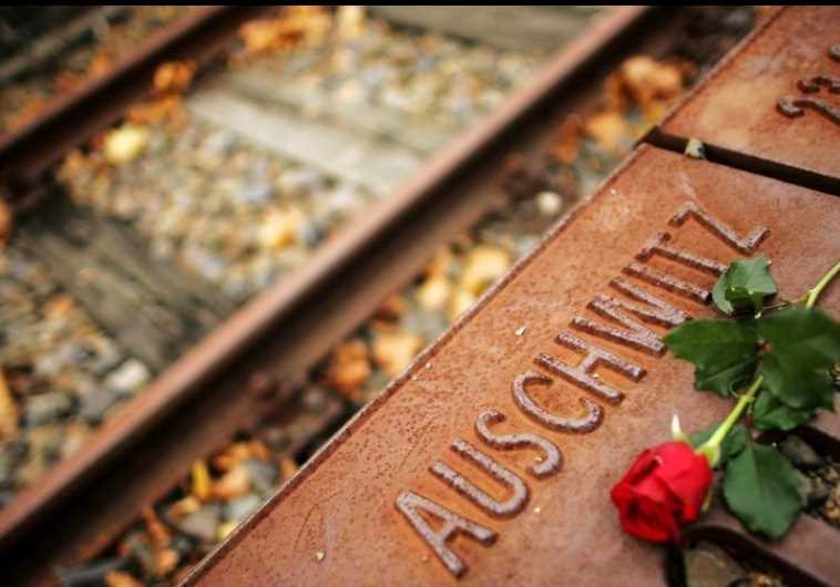 A red rose lies at Gleis 17 (platform 17) holocaust memorial at a former cargo railway station in Berlin-Grunewald. (photo credit: REUTERS)