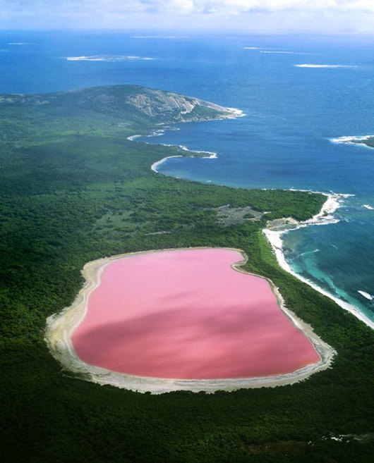 bismuth_swim-lake-hillier-australia-2-530x657.jpg