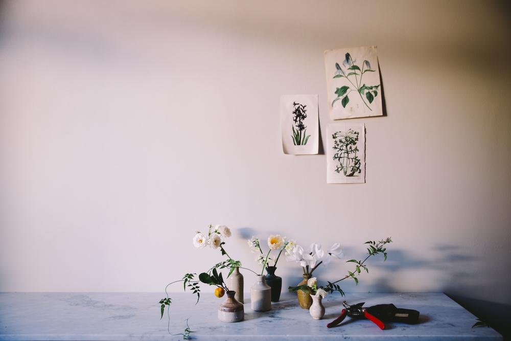 JardineHansen-033.jpg