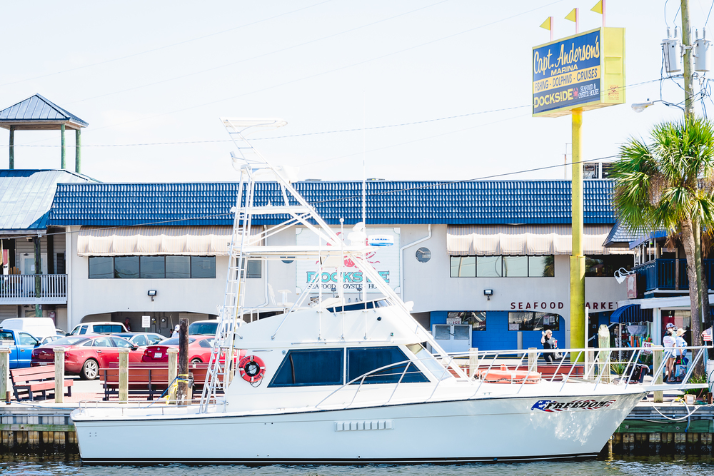 Panama city beach deep sea fishing charters charter boat for Panama city beach charter fishing