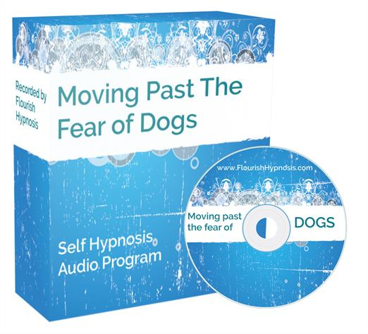 Move past the fear of dogs