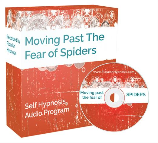 Move past the fear of spiders
