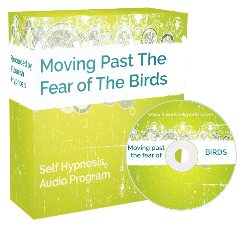 Move past the fear of birds