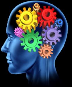 brain processing.png