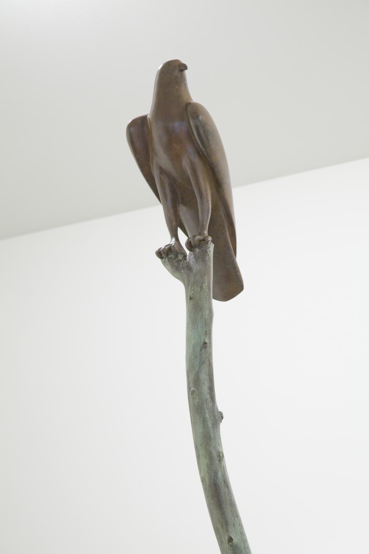 Hawk VI on a Branch (detail)