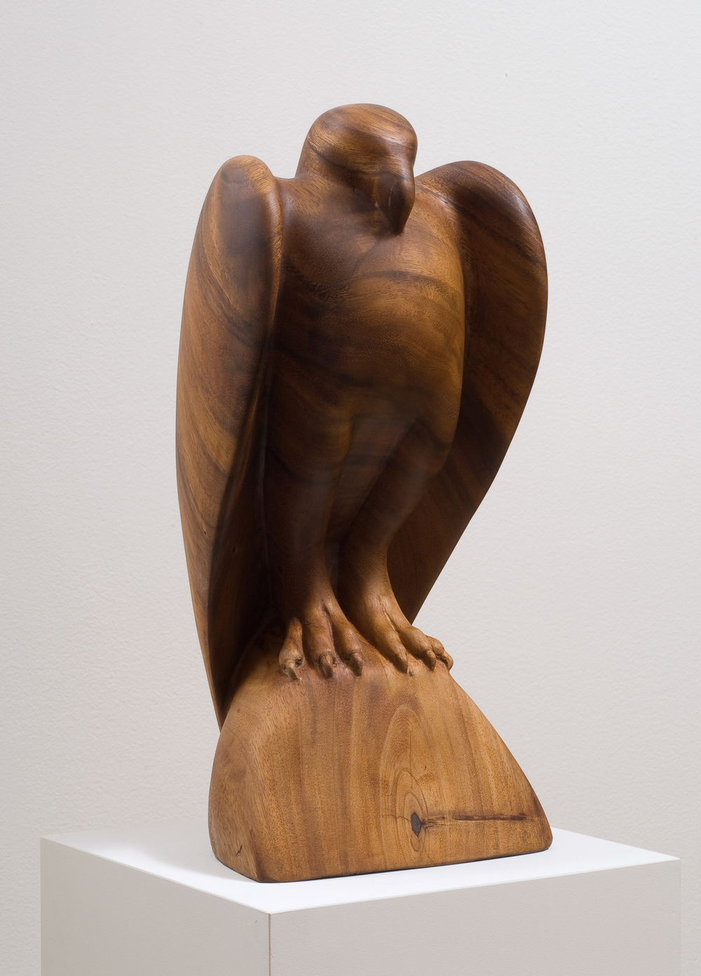 Koa Wood Raptor