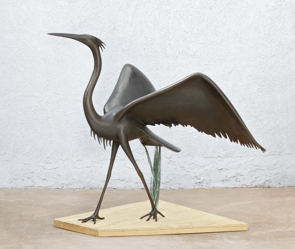 Large Winged Heron