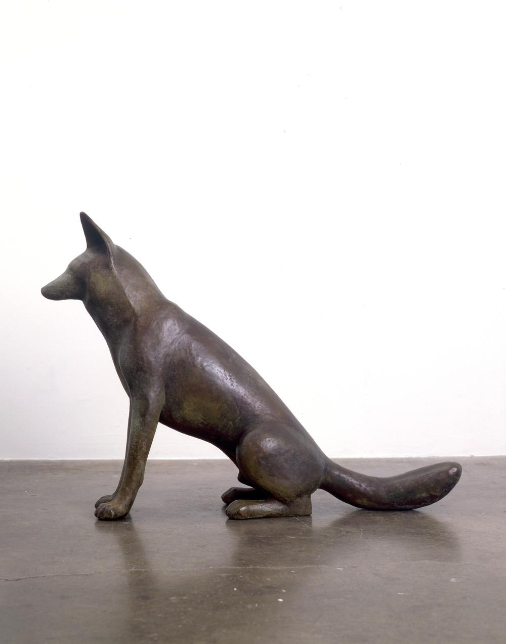 Coyote VI